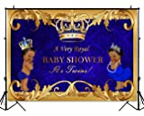 Mehofoto Boy and Girl Twin Baby Shower Backdrop