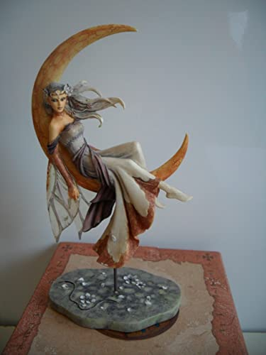 Jessica Galbreth Munro Fairysite Dragonsite – Moon Dreaming LE4800 – JG50131