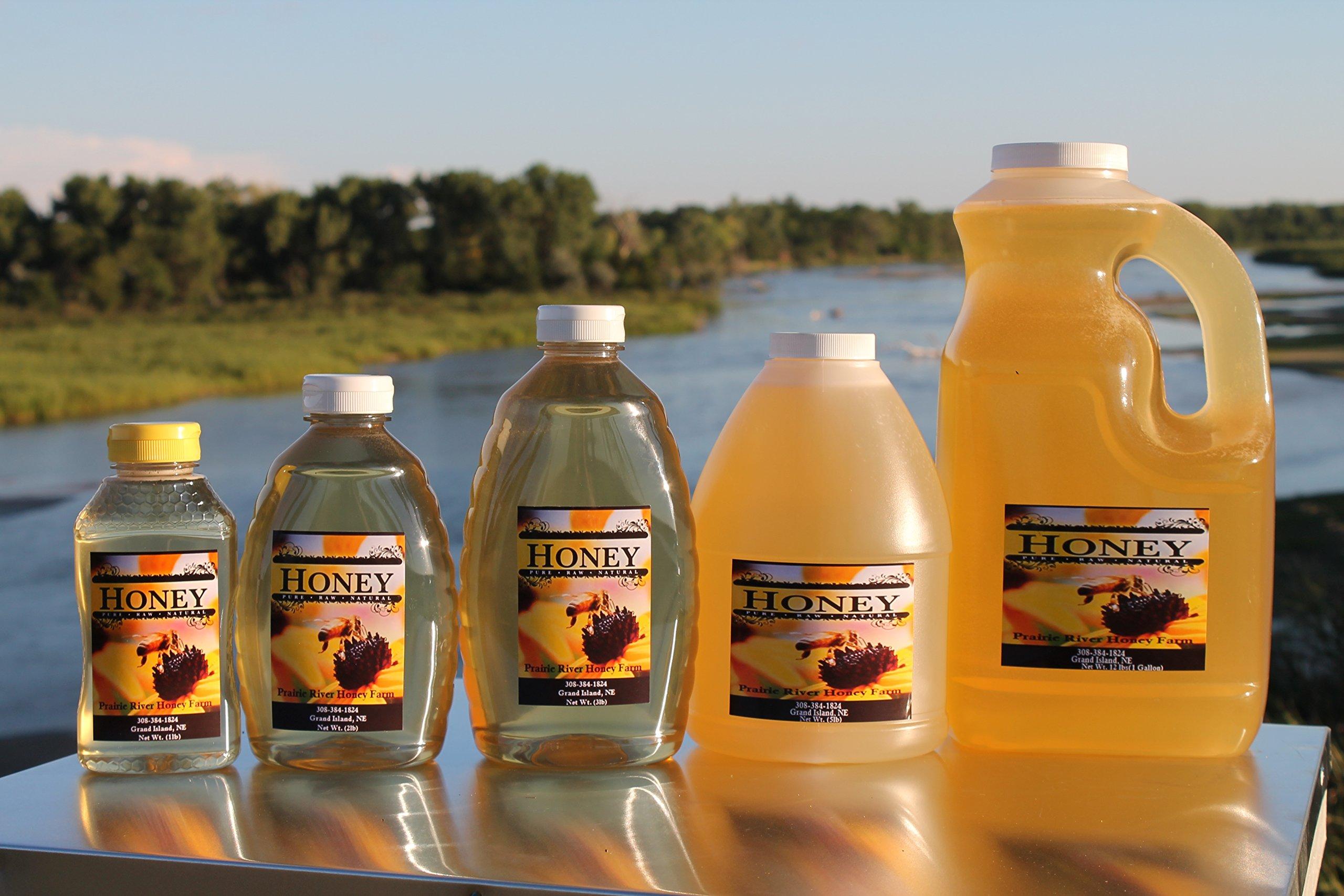 Raw Honey Pure Natural Nebraska Honey One 2lb Jar by Prairie River Honey Farm (Image #2)