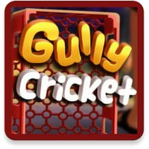 Gully Crickets Game
