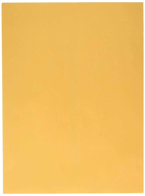 Sparco Catalog Envelope, Plain, 28lb, 9-Inch x 12-Inch, 250 per Box, Kraft (SPR09654) S.P. Richards Company