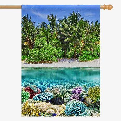 Amazon Com Interestprint Tropical Island And Underwater