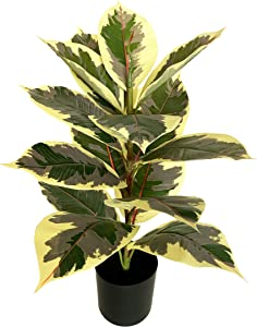 BESAMENATURE 22 Inch Artificial Mini Rubber Tree Plant - Ficus Tree - Faux Tropical Tree Used for Home Office Decoration, Golden