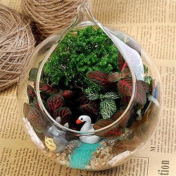 Vase boule mariage great vase boule transparent with vase for Mini aquarium boule