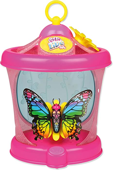 Amazon Com Little Live Pets Butterfly House Colours May Vary Computers Accessories