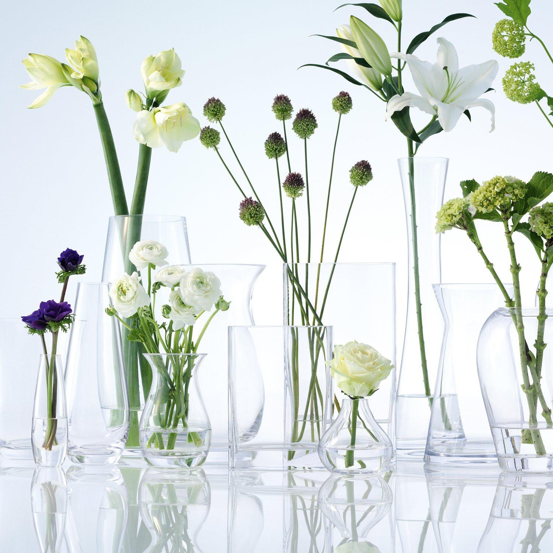 Lsa international flower single stem vase clear 17 cm high lsa international flower single stem vase clear 17 cm high amazon kitchen home reviewsmspy