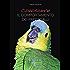 Conoscere il comportamento dei pappagalli (Pet-ology professional)
