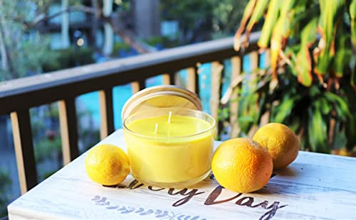 Amazon Com Citrus Paradise Luxury Scented Soy Jar Candle Hand Poured In California Highly Scented Long Lasting Large 22 Oz Handmade
