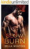 Slow Burn (Forbidden Heat Book 3)