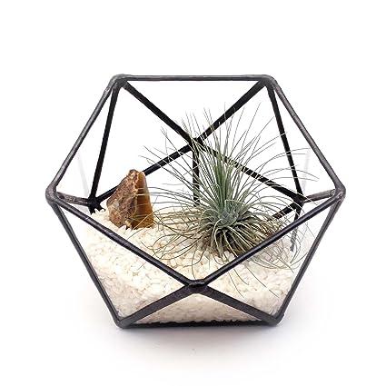 icosaedro Cristal geométrico Pequeño terrario//Handmade Maceta de cristal/Moderno Maceta para interior