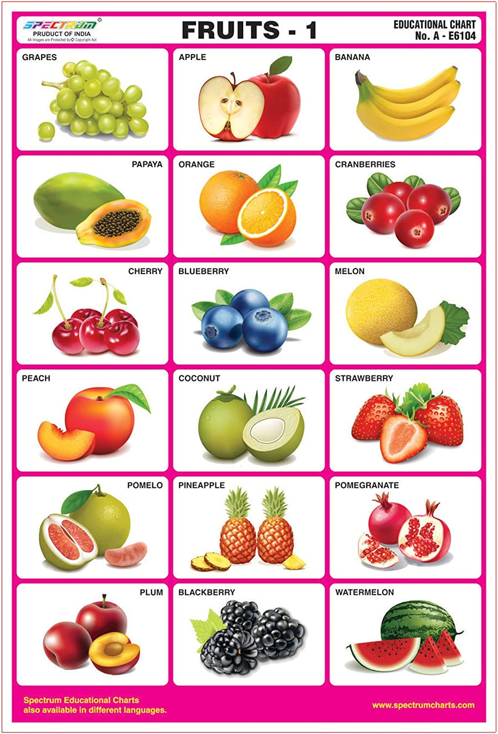 Amazon Com Spectrum Fruits 1 Pre Primary Kids Learning Educational Laminated Wall Chart Industrial Scientific