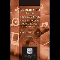 El derecho en la era digital (Biblioteca Jurídica Porrúa)
