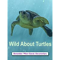 Wild About - Turtles