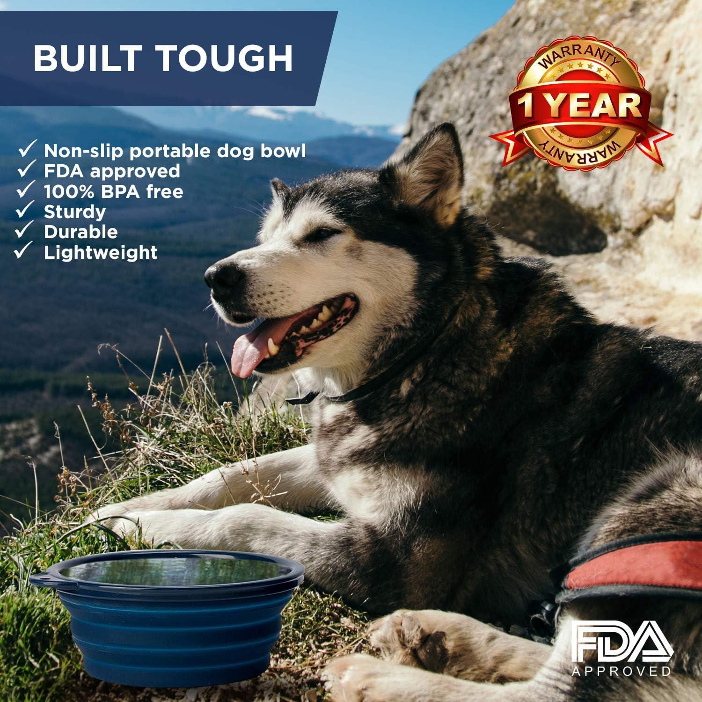 Amazon.com: Bonza - Cuenco grande plegable para perros ...