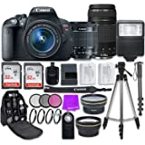 Canon EOS Rebel T5i Digital SLR Camera with Canon EF-S 18-55mm IS STM Lens + Canon EF 75-300mm f/4-5.6 III Lens + Accessory Bundle
