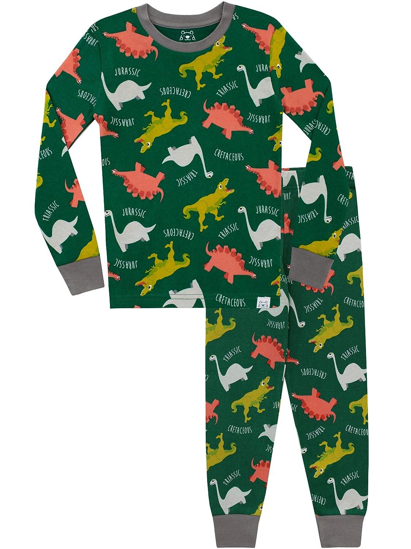Harry Bear Boys' Dinosaur Pajamas