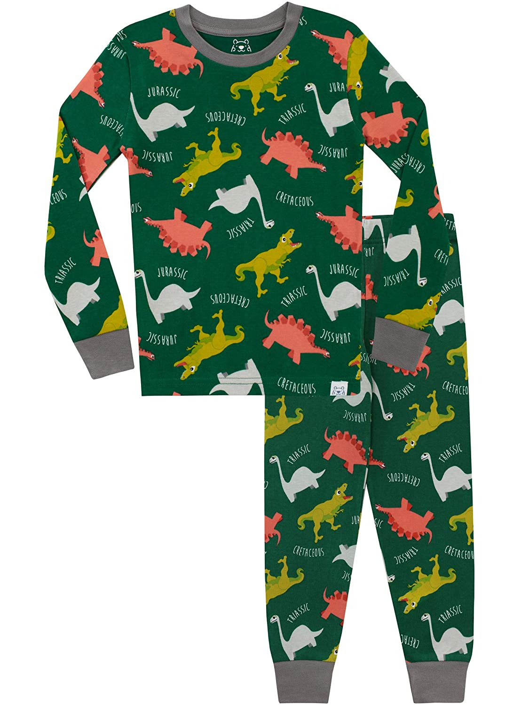 f4580e44ae16 Harry Bear Boys Dinosaur Pyjamas Snuggle Fit  Amazon.co.uk  Clothing