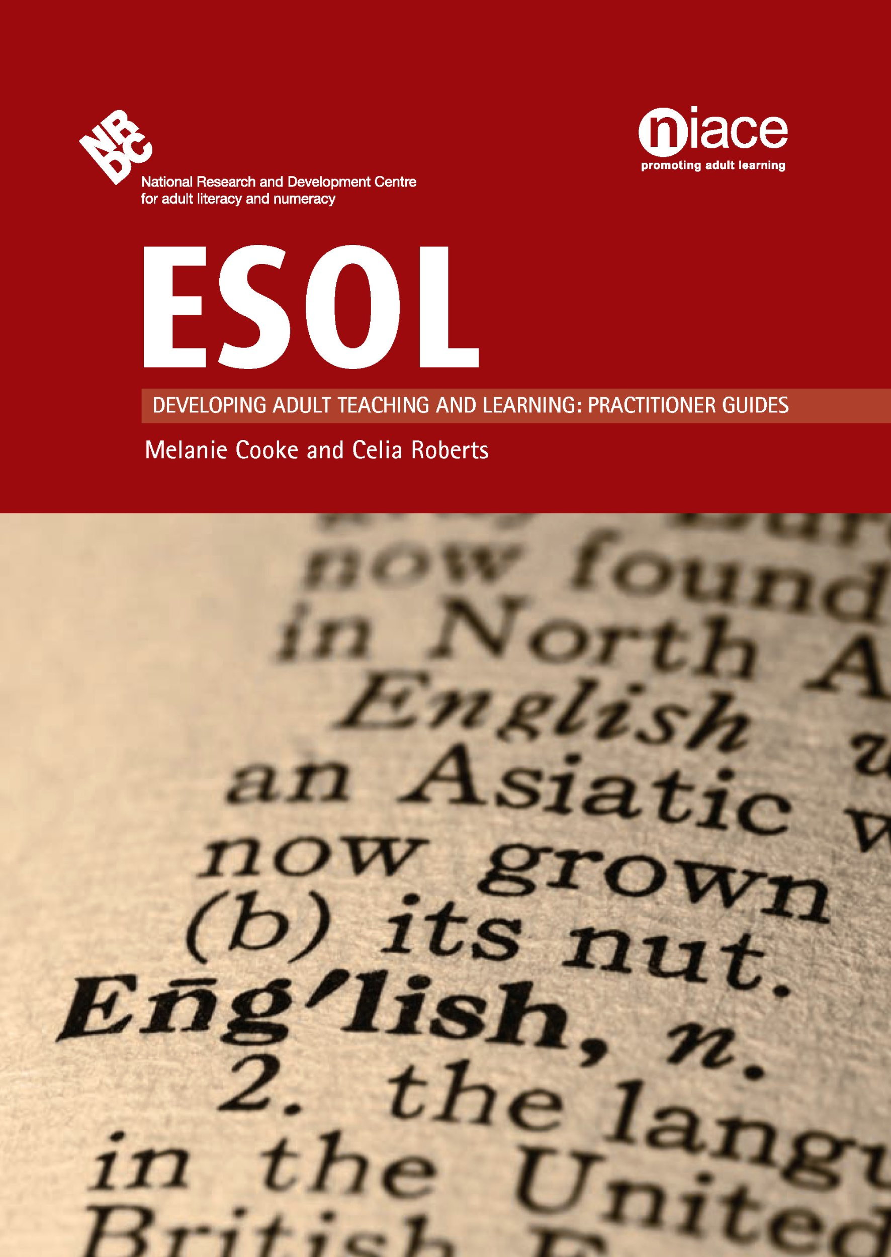 Read Online ESOL (Developing Adult Teaching and Learning: Practictioner Guides) pdf