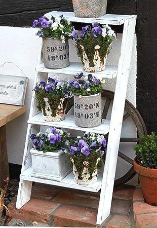 Shabby Fleurs Escalier En Bois Pour Fleurs Décoration Plante Escalier Fleur  Étagère échelle