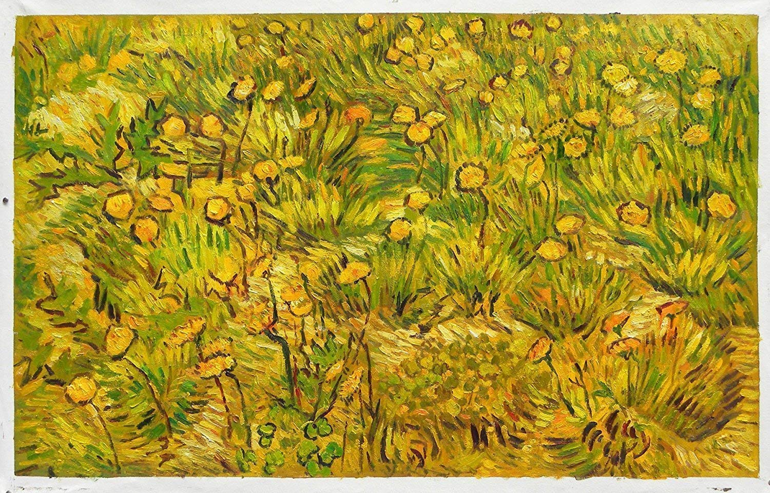 Amazon.com: A Field of Yellow Flowers - Vincent
