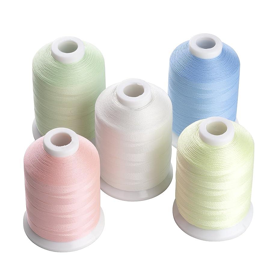 息苦しい押し下げる衣類蓄光糸、暗閣で光る、夜光刺しゅう糸?刺繍糸、光る糸、5色/セット各500M
