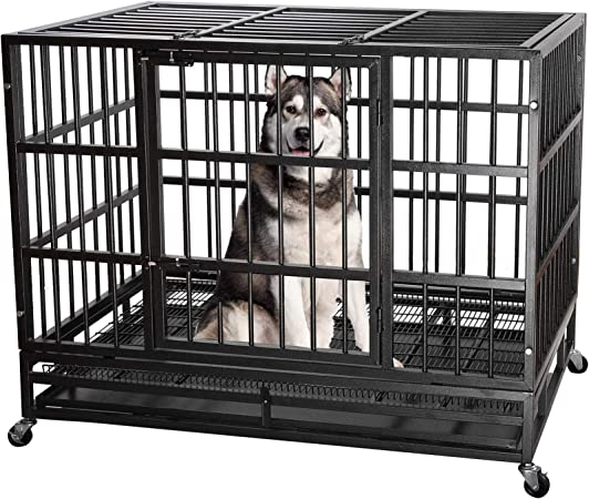 Best Heavy Duty: ITORI Heavy Duty Metal Dog Crate