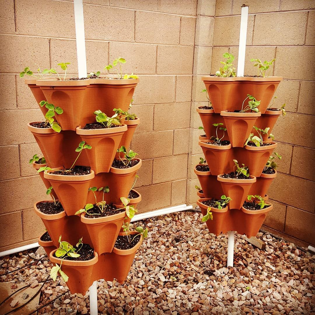 Superior Amazon.com: LARGE Vertical Gardening Stackable Planters   Grow More In Any  Space   Plant. Stack. Enjoy.   DIY Stacking Garden Container System   Grow  ...