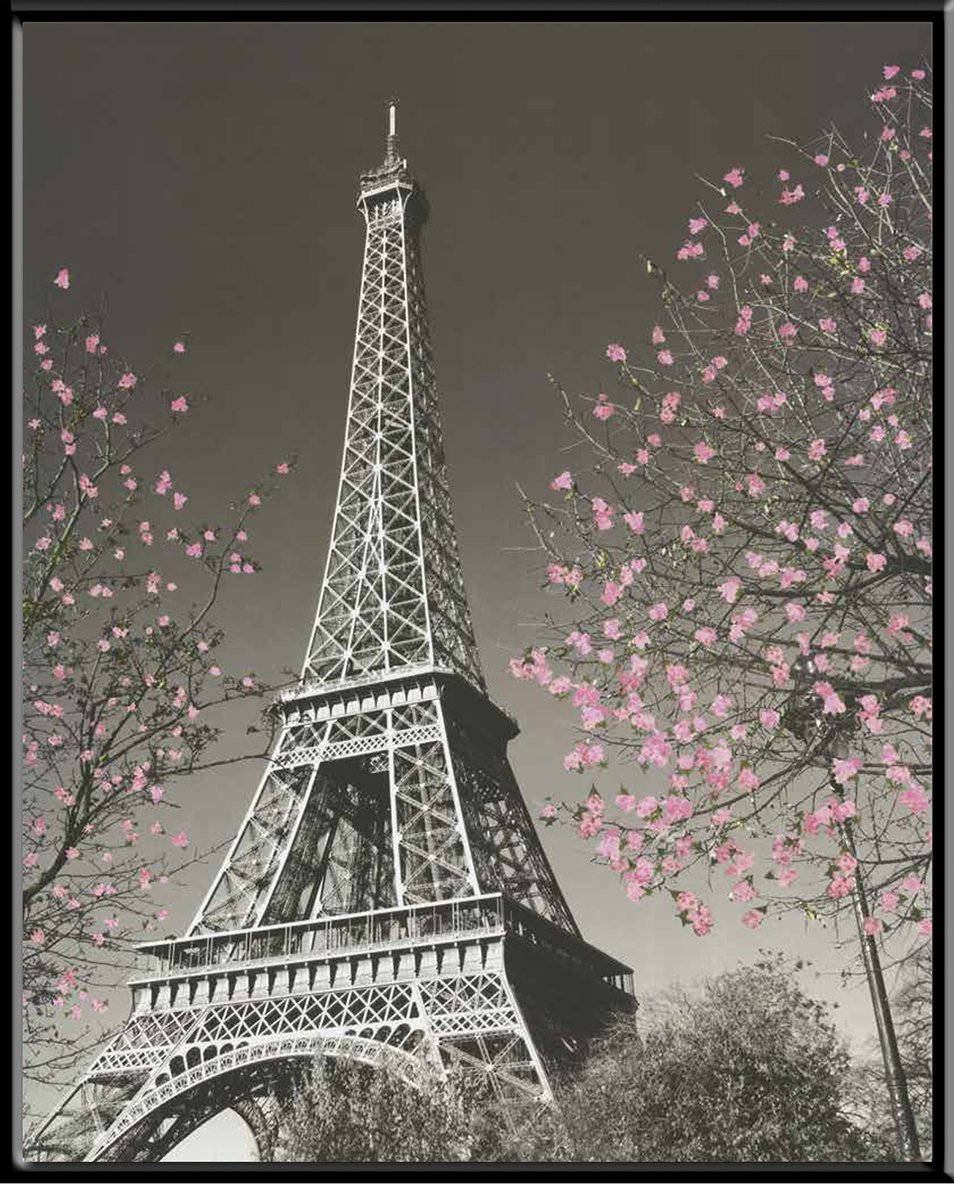 ET324-F 8 X 10 Wooden Framed Desktop Print Culturenik Paris Eiffel Tower Blossoms Decorative Photography Travel City Poster Print