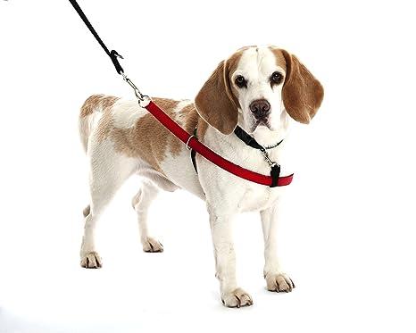 Empresa de animales walkezee Non Pull Arnés para perros Stop ...