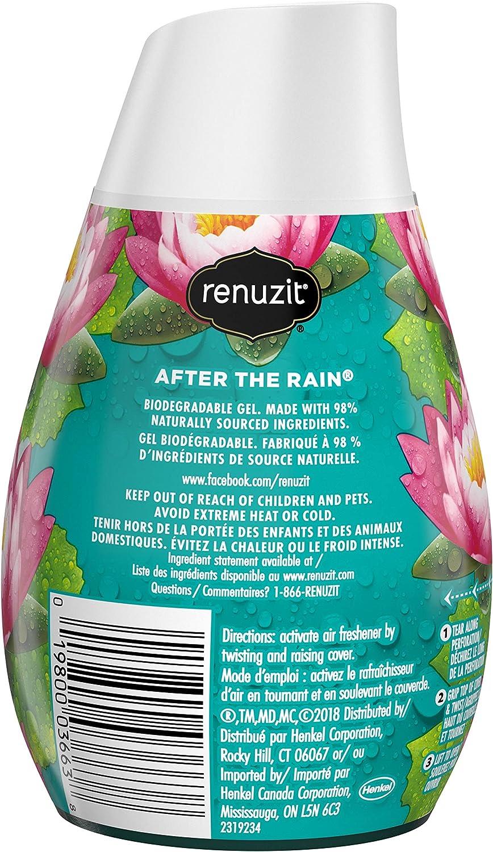 renuzit después de la lluvia ambientador: Amazon.es: Salud y ...