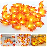 String Fairy Lights, Fall Maple Leaves String Light for Halloween Christmas Party Decoration by Parner, 30 LEDs 10 Feet Seasonal Lights Indoor
