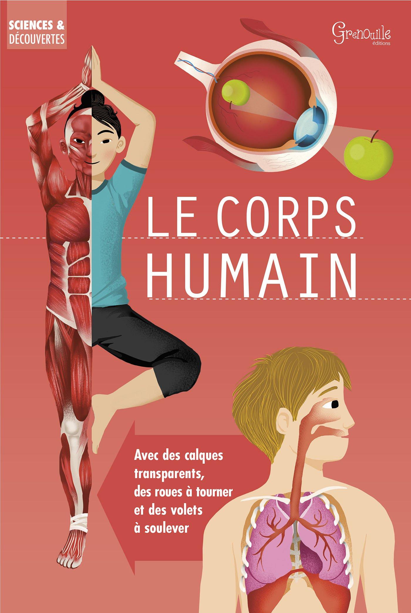 Le corps humain Album – 29 janvier 2018 Mark Ruffle Galia Bernstein Anna Claybourne Marie-Line Hillairet