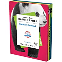 Hammermill Assorted Colors Cardstock, 110 lb, 8.5 x 11 Colored Cardstock, 1 Pack (200 Sheets) - Thick Cardstock, Made in…