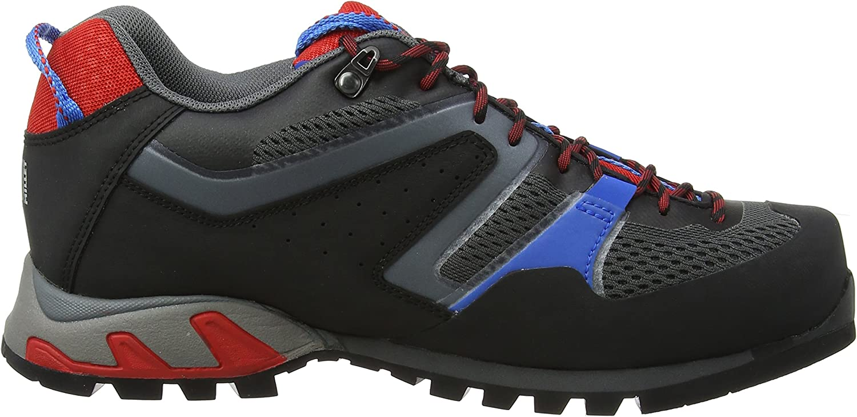 MILLET Trident GTX Zapatos de Low Rise Senderismo para Hombre