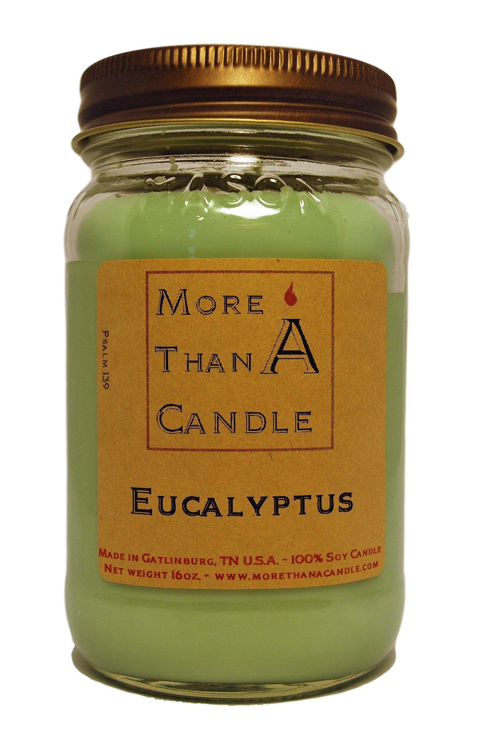 More Than A Candle 16 oz Mason Jar Soy Candle - Made in the USA Eucalyptus