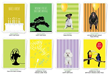 Assorted Best Selling Birthday Cards Set Of 8 Greeting