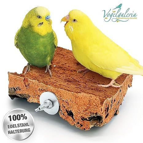 Vogelgaleria Asiento de Corcho 10cm x 10cm con Soporte de Acero ...