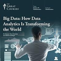 Big Data: How Data Analytics Is Transforming the World