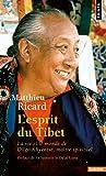 L'esprit du Tibet. La vie et le monde de Dilgo Khyentsé maître spirituel