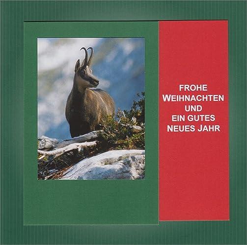 Jagdliche Weihnachtsgrüße.Jagdliche Weihnachten Textkarte Mit Motiv Von Handmadegruss Edel