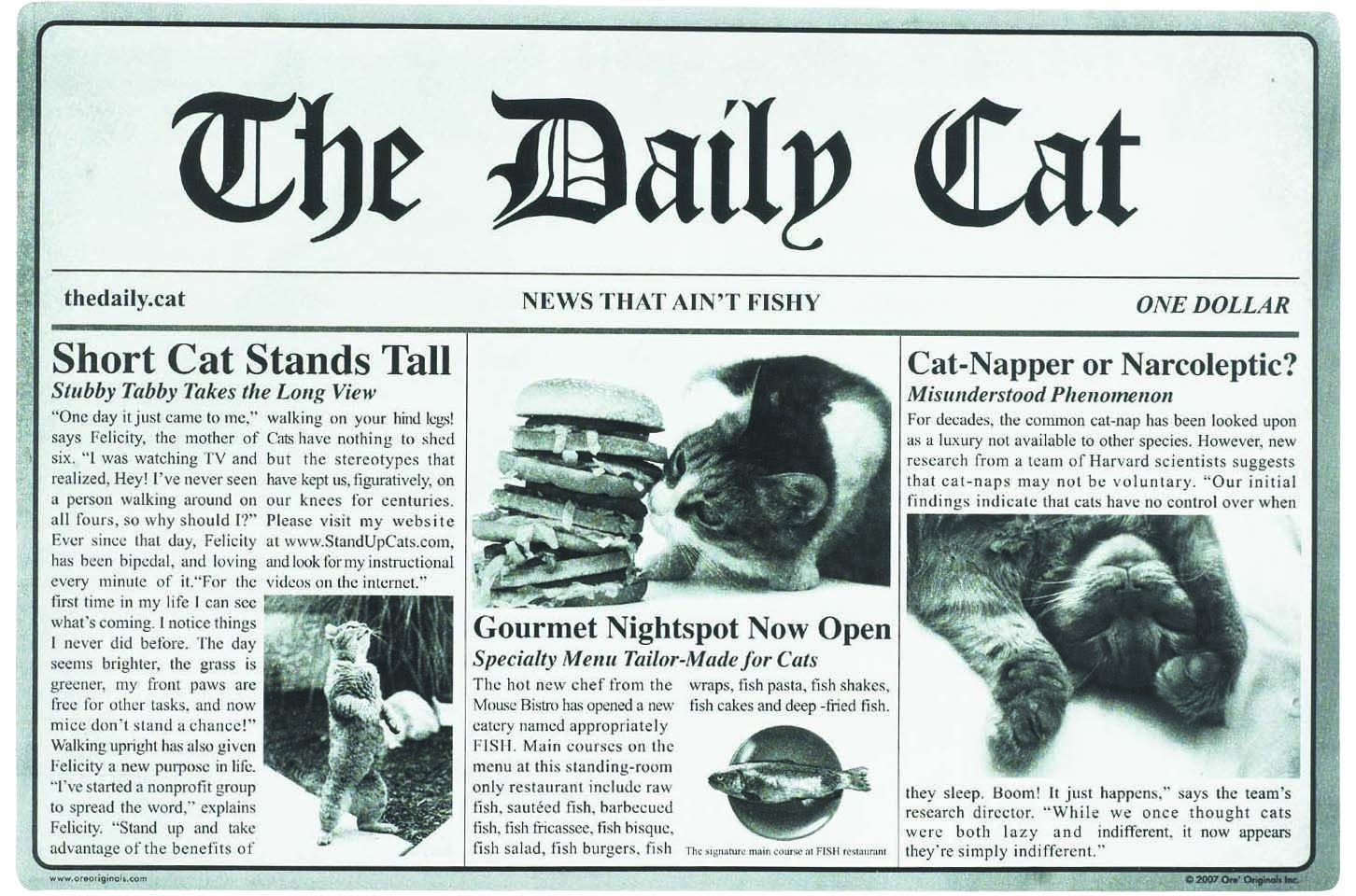 ORE Pet The Daily Cat Placemat