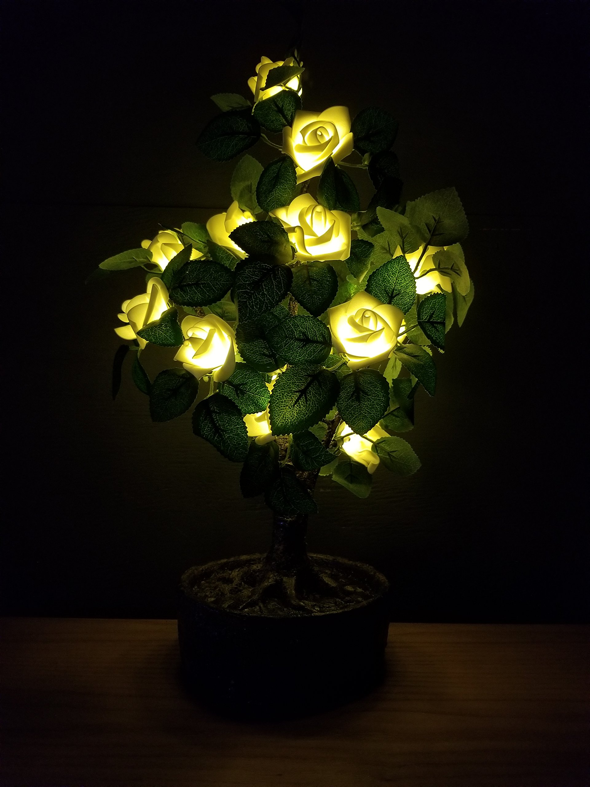 Bright Baum LED Light Artificial Bonsai Tree, 2.0-Feet, White Rose JUNO by Bright Baum