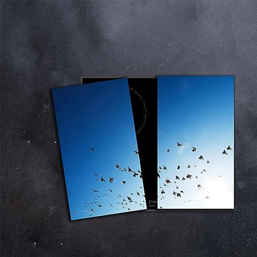 Compra CTC-Trade | herdabdeckplatten Juego 2 x 30 x 52 cm ...