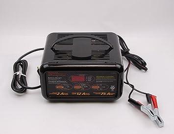 Amazon.com: motomaster 12/2 A Cargador de batería automático ...