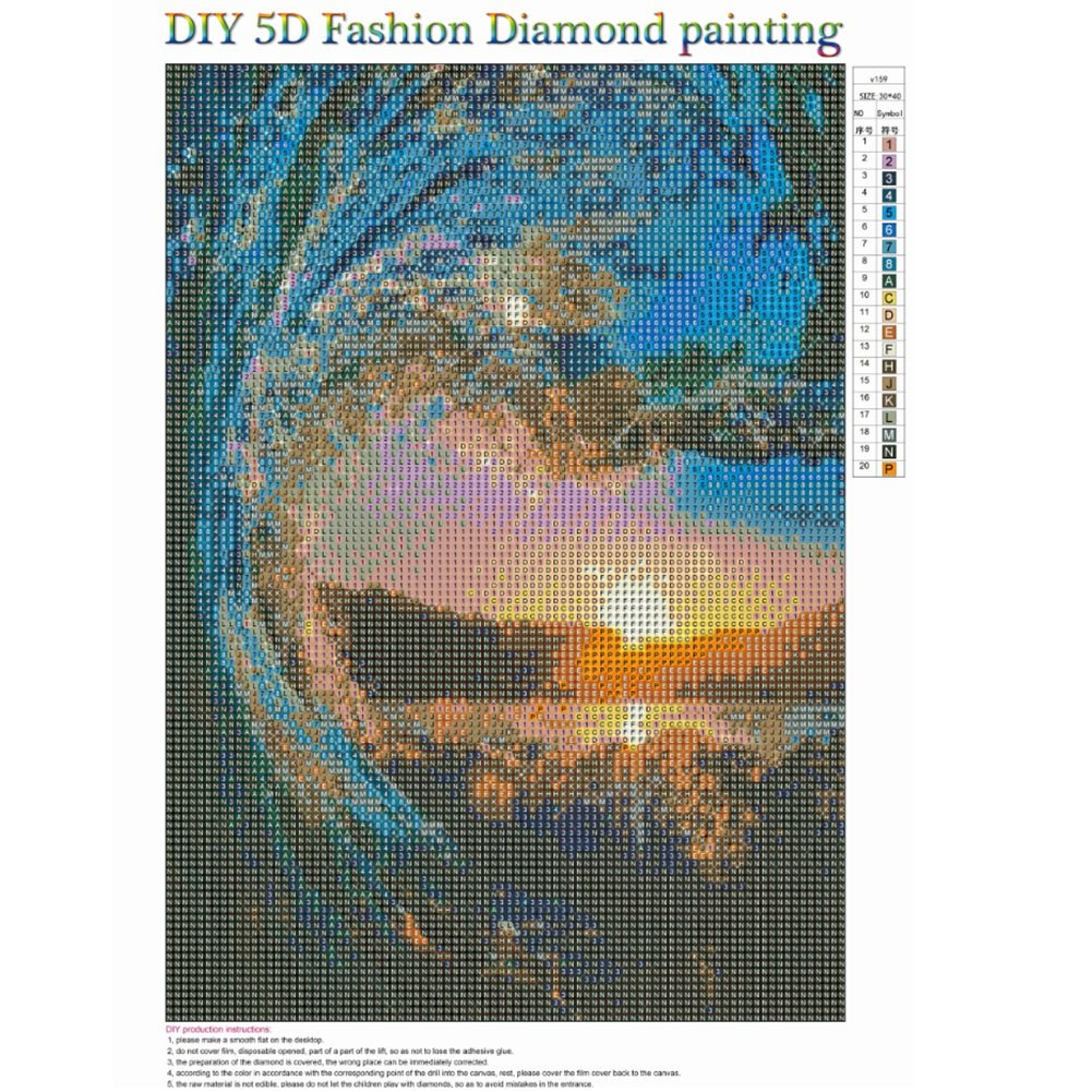 5D Diamond Painting Kit Complete Diamond Embroidery Painting DIY Embroidery Cross-Stitch for Home Wall Decoration Anna 12X16 inches