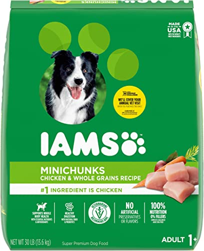 IAMS-PROACTIVE-HEALTH-Adult-Minichunks-Small-Kibble-High-Protein-Dry-Dog-Food-with-Real-Chicken