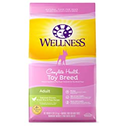 Wellness Natural Pet Food Dog Food