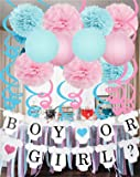 Gender Reveal Decorations Baby Shower Decorations with Boy or Girl Banner Tissue Pom Poms Paper Lanterns Foil Hanging Swirl Decorations Baby Pink and Blue Decorations Gender Reveal Party Supplies