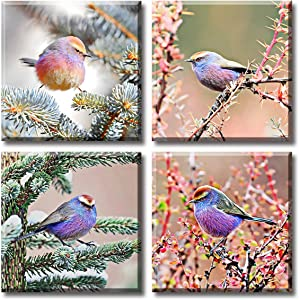 """Bird Canvas Wall Art Natural Ecology Festoon Finches Warbler Colourful Animal Flower Picture Pink Poster Modern Livingroom Home Decor 12X12""""X4 Piece Stretched and Framed Ready to Hang…"""