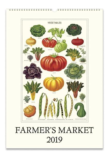 Market Calendar 2019 Amazon.com: Cavallini Papers & Co., Inc. 2019 Wall Calendar